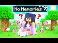 Gambar cover Aphmau Lost All Her MEMORIES In Minecraft!