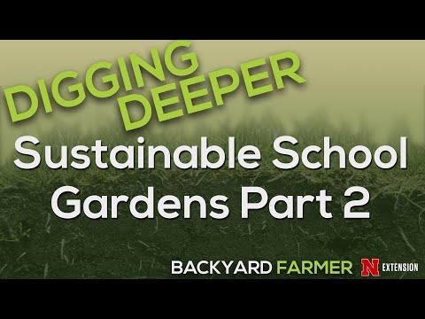 Digging Deeper Sustainable School Gardens 2