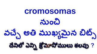 cromosomas telugu group 3, group 2 vro vra all competitive exams