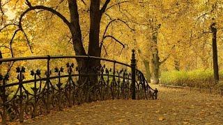 Осенняя грусть   /Autumn sadness .../