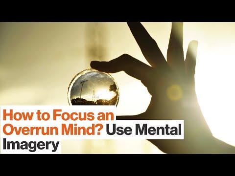 Build Mental Models to Enhance Your Focus | Charles Duhigg | Big Think