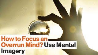 Build Mental Models to Enhance Your Focus  Charles Duhigg  Big Think