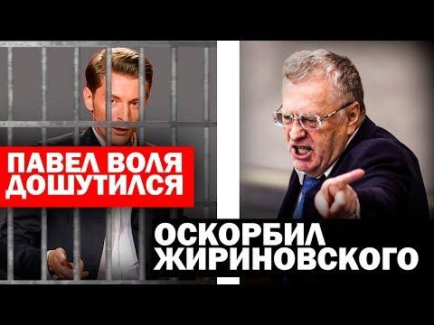 Павел Воля перешел грань. Оскорбил Жириновского