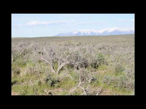 Vacant Land Elko Nevada 2.3 Acres