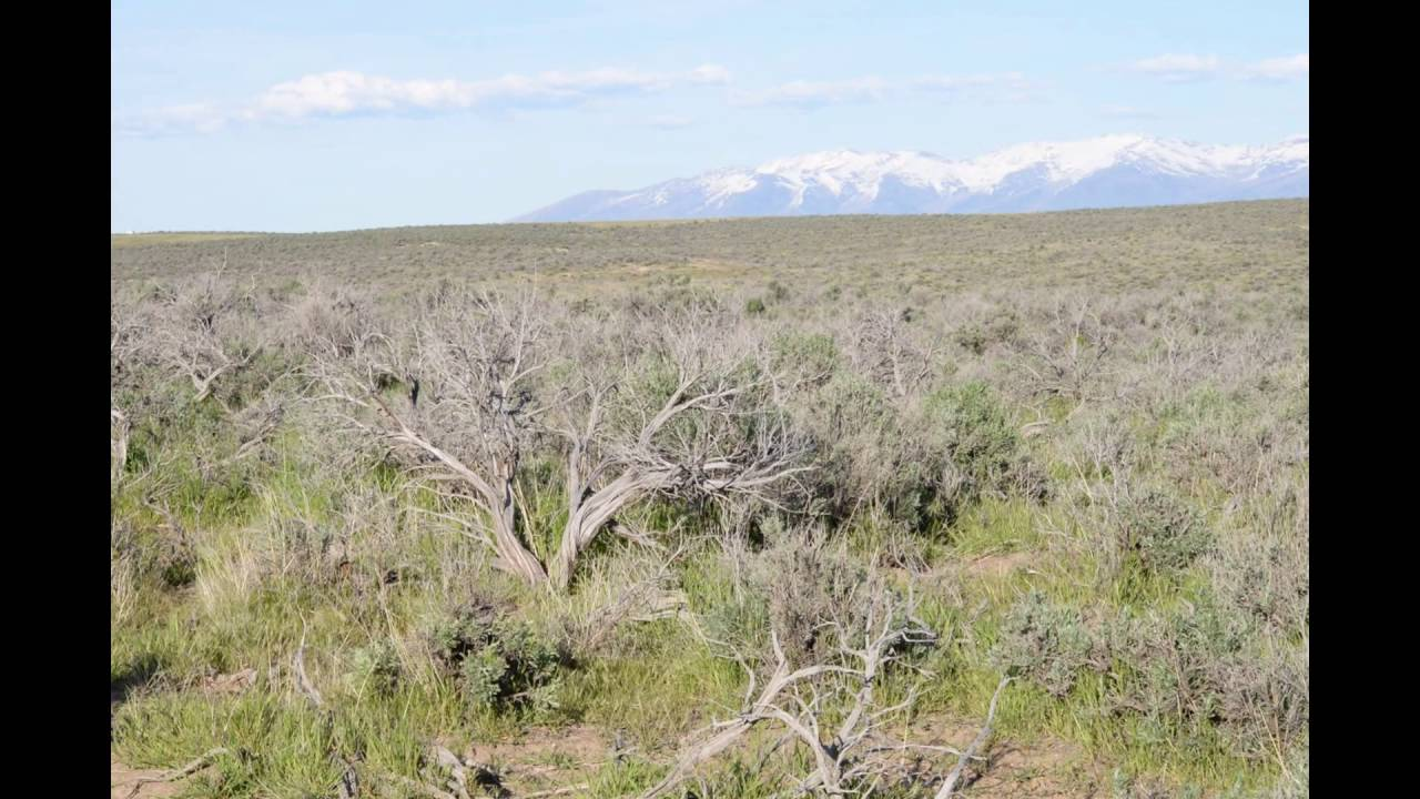 Vacant Land Elko Nevada 2.3 Acres