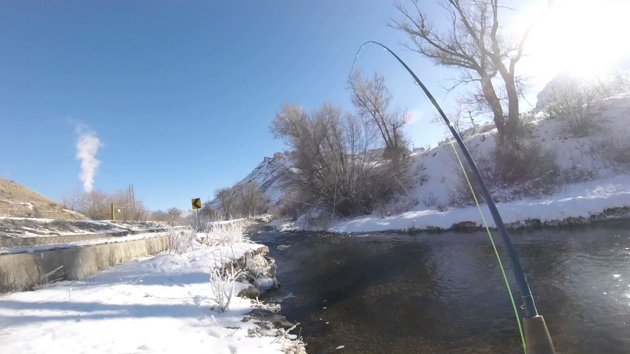 Catching brown trout on weber river youtube for Weber river fishing report