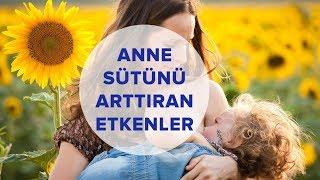 Anne Sütünü Olumlu veya Olumsuz Etkileyen Faktörler | Anne ve Çocuk
