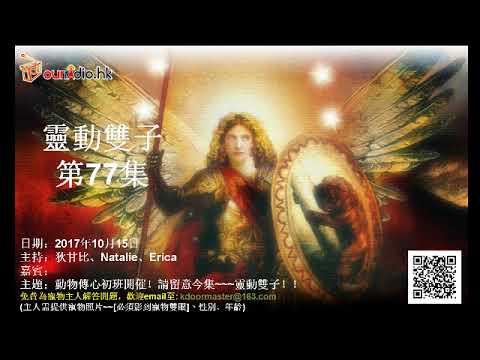 靈動雙子 第77集[讀物術]