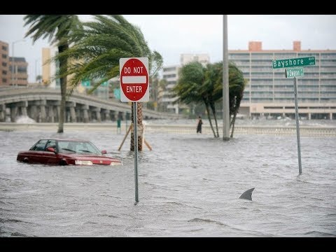 Tampa before Hurricane Irma, floods, surge, tourism, financial centre, hotels,