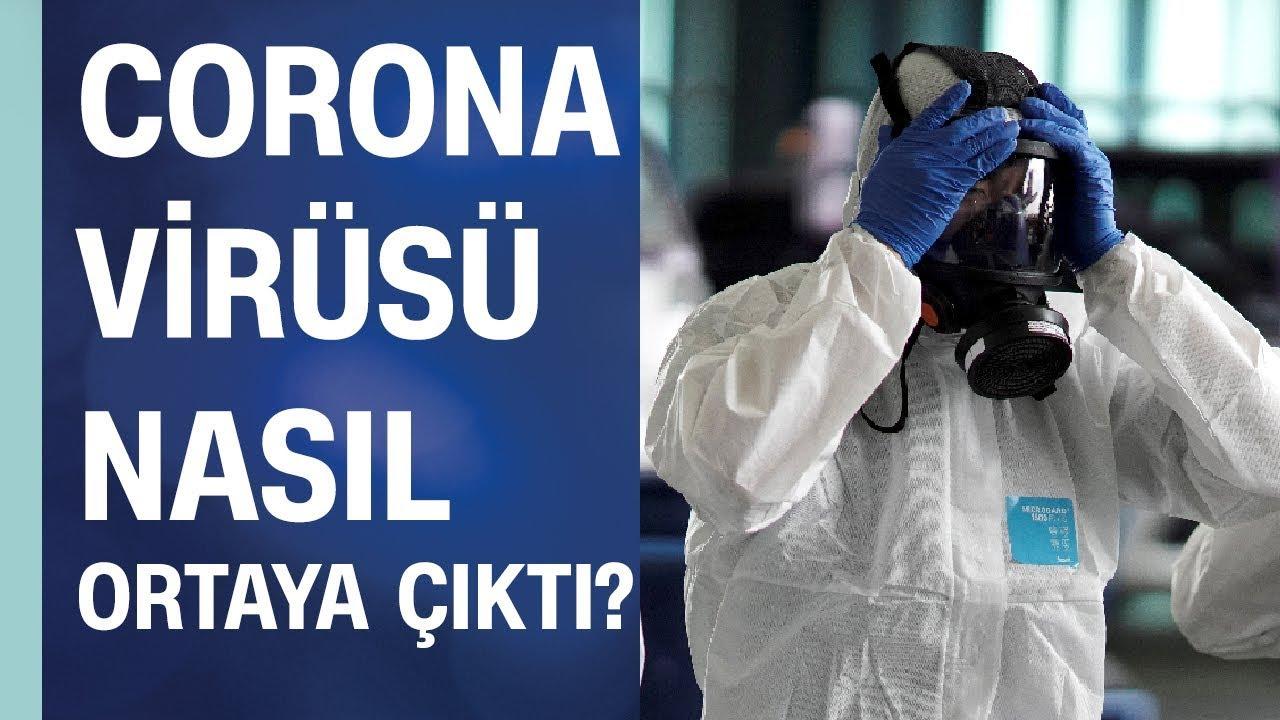 Çin'deki Corona (Korona) virüsü nasıl ortaya çıktı? İnsanlara gerçekten yarasadan mı bulaştı?