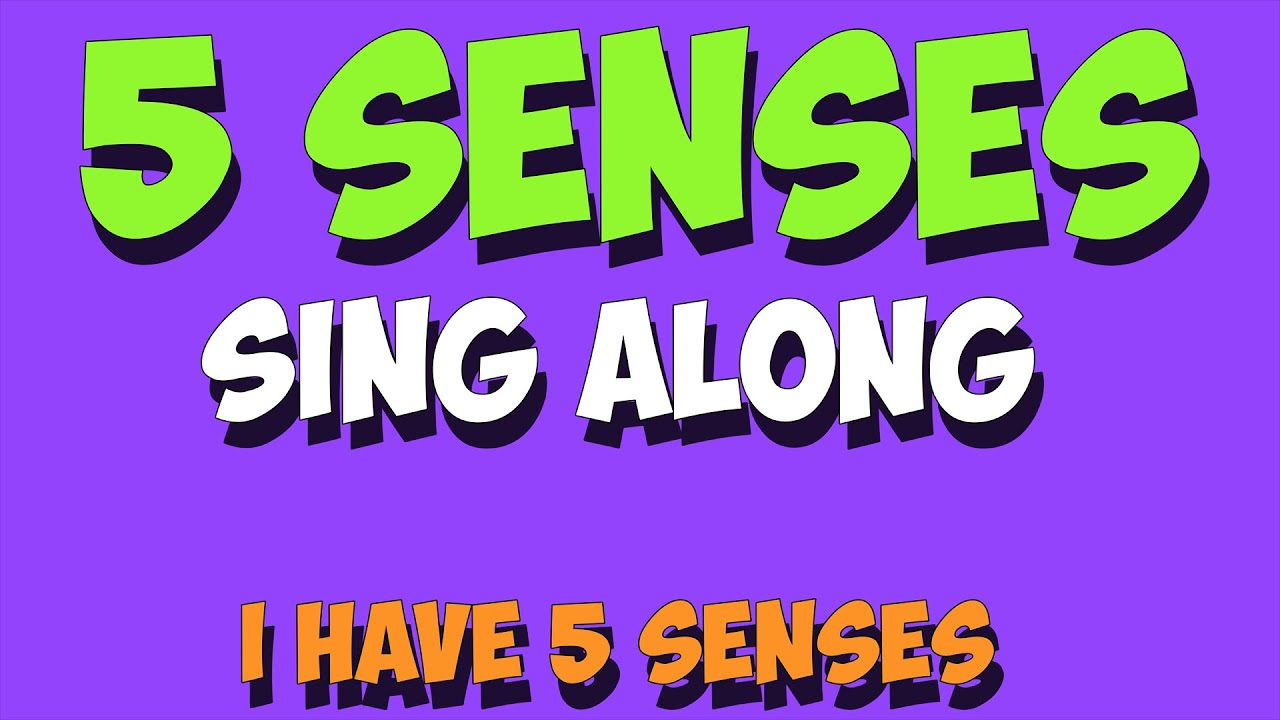 5 senses sing along youtube. Black Bedroom Furniture Sets. Home Design Ideas