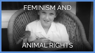 Feminism and Animals Rights