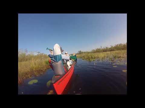 2018 Okefenokee Swamp Paddle