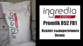 Изолят сывороточного протеина   ingredia