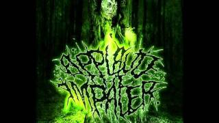 Watch Applaud The Impaler Malignant Nihilism video