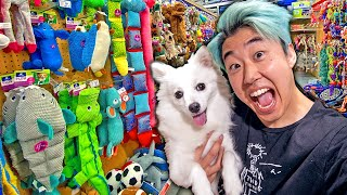 Surprising My Puppy With 24 Gifts in 24 Hours!