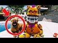 NIGHTMARE FRED BEAR GETS HIS FIRST PET DOG! (GTA 5 Mods For Kids FNAF RedHatter)