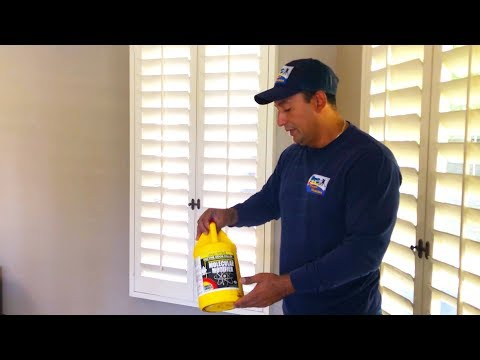 HOW TO GET RID OF PET URINE ODORS & STAINS? BEST CARPET CLEANING SOLUTIONS