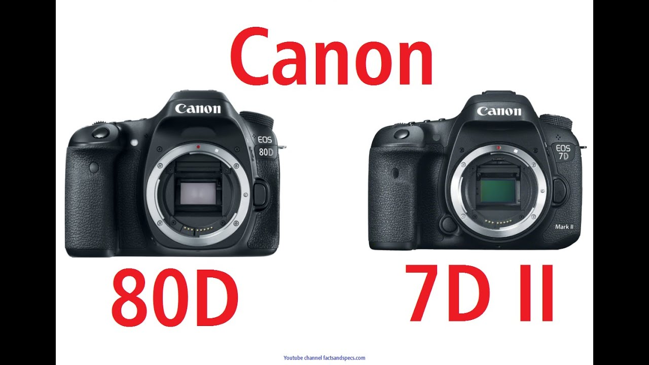 Canon EOS 80D vs Canon EOS 7D Mark II - close relatives