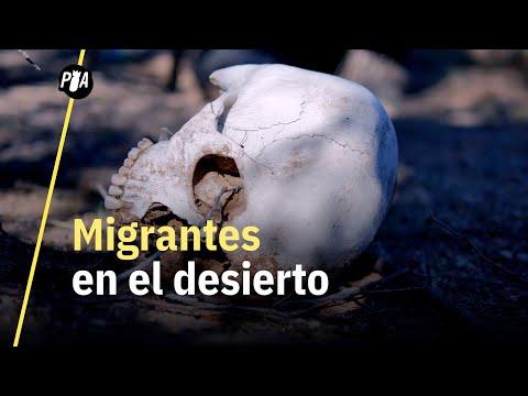 Ellos buscan a los migrantes perdidos en el desierto de Arizona | Águilas del desierto