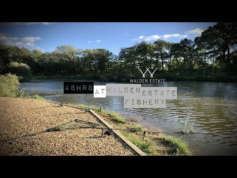 48hrs At Walden Estate Fishery || Competition Winner Announced || Martyns Angling Adventures