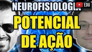 Vídeo Aula 130 - Neurofisiologia/Biologia Celular: Potencial de Ação (despolarização) e de Membrana