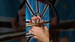 Introdução da música cheia de manias-raça negra no trompete