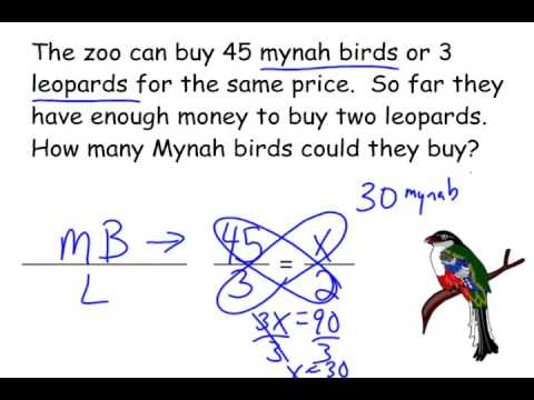 How To Solve Word Problems Using A Proportion Youtube