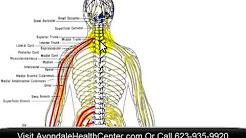 Basics of Chiropractic in Avondale, AZ