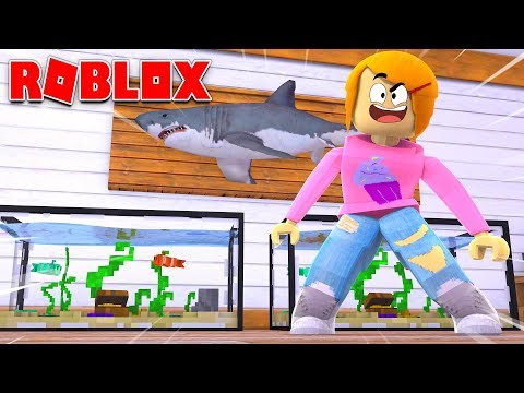 Roblox Escape The Fish Store Obby With Molly!