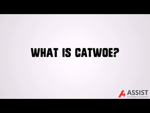 What Is CATWOE?