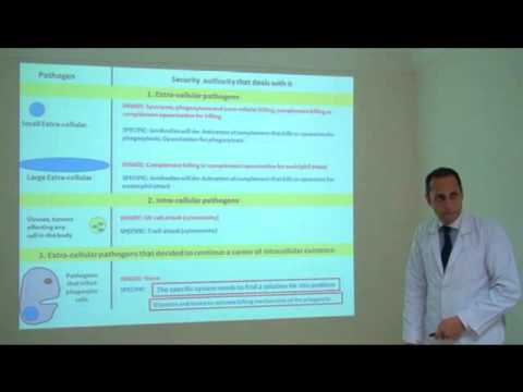 Lecture 4 Basic Immunology Part 1 of 3 by Dr. Hatem Hamdi Eleish