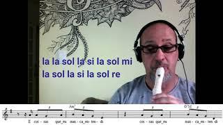 Baixar Flauta doce 16  -  OUVI DIZER -  MELIM  (Cover)