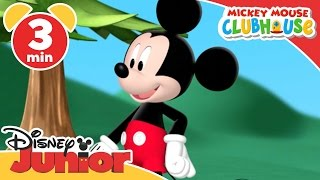 Mickey Mouse Clubhouse | Hungry Chipmunks | Disney Junior UK thumbnail