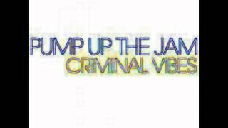 Download Crinimal Vibes - Pump up the jam Club mix MP3 song and Music Video