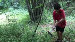 Time lapse of cutting down a tree (FT. Skull Society)