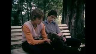 Gaesti - prea tineri pentru riduri 1982