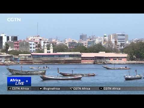 Senegal Takes Steps To Make Fishing Industry Sustainable