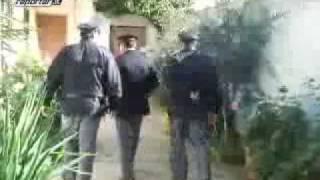 arresto boss