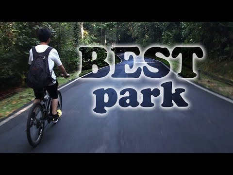 The BEST Park | All Activities in One Park | Botanical Garden, Shah Alam