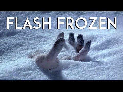 Adam Plays Flash Frozen - PEACH PASSION
