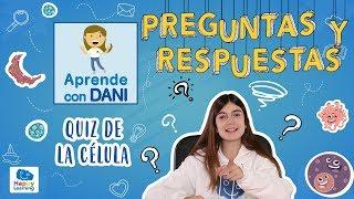 Aprende Jugando Cuanto Sabes De La Celula Preguntas Y Respuestas Aprende Con Dani Youtube