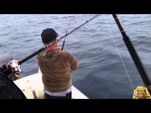 Yft fishing off dana point youtube for Fishing dana point