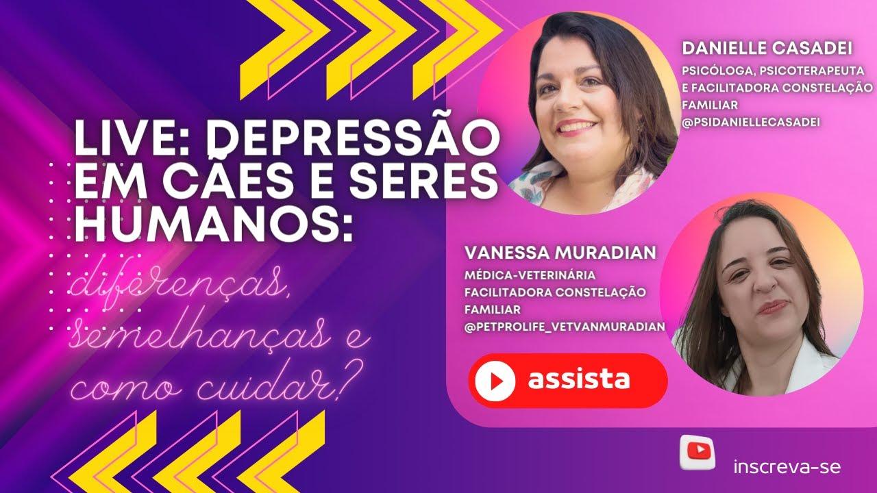 LIVE Depressão em cães e seres humanos: diferenças, semelhanças e como cuidar