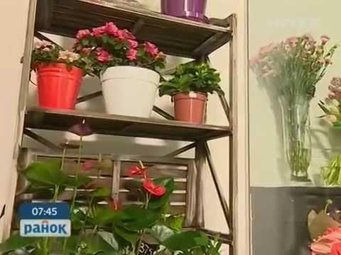 Цветочный бизнес - выгодное дело