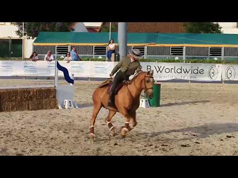 Portuguese National Championship Working Equitation Speed Trail Godinho/Trigo
