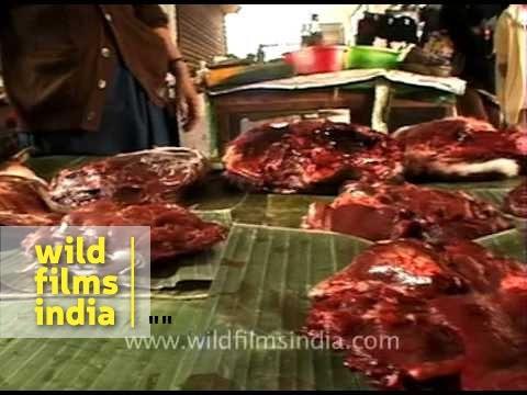Bushmeat market in Nagaland, India