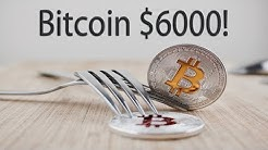 Bitcoin Hard Forks Will Determine Future Crypto Prices