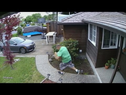"""Police try bait packages to nab """"porch pirates"""""""