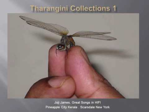 Tharangini Collection -  In High Fidelity
